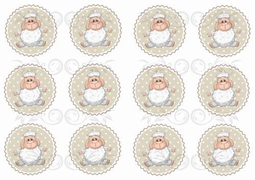 GeroniGombok - Új bárányok hullámos körökben filclap (A/4)